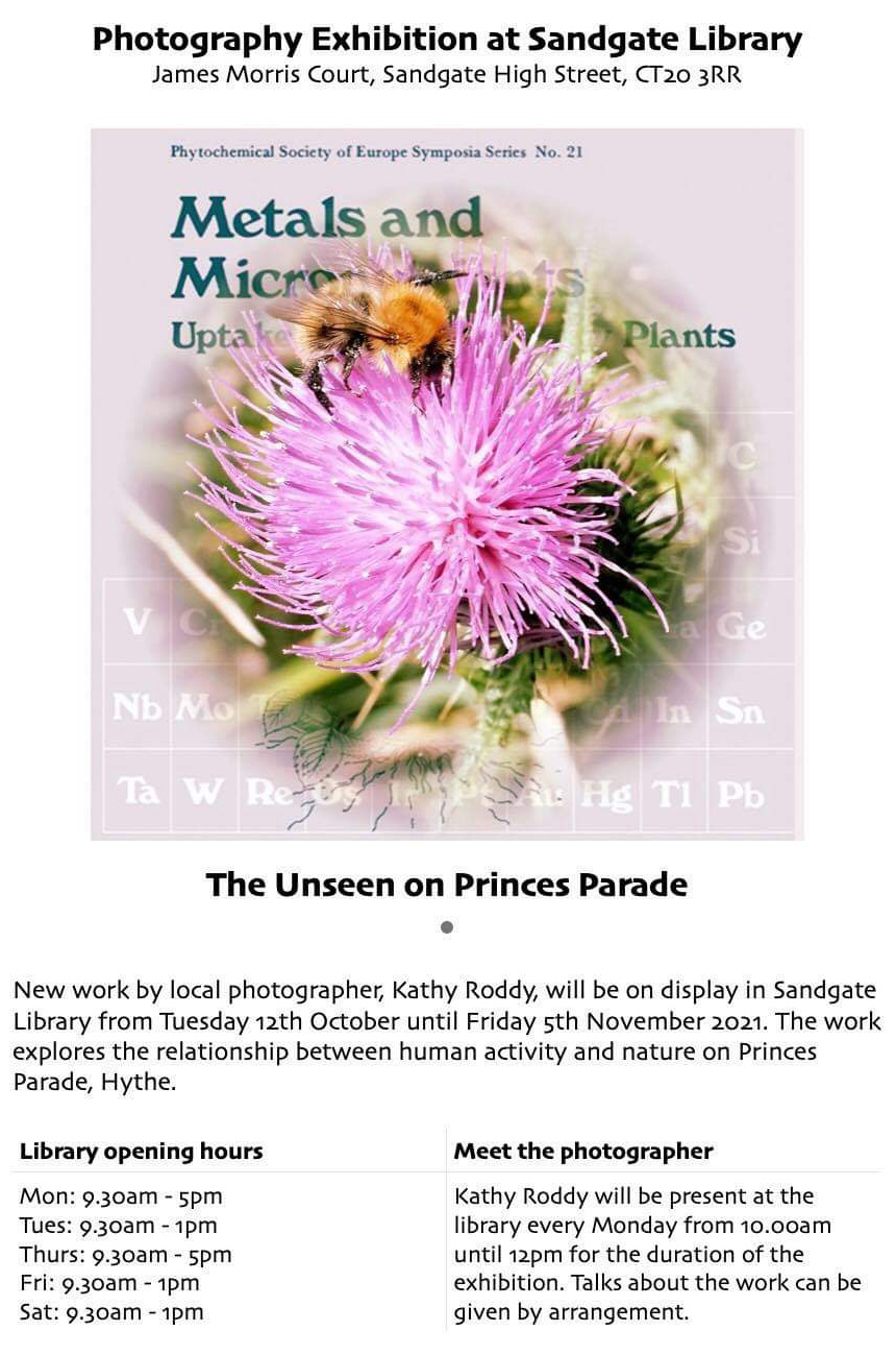 The Unseen on Princes Parade